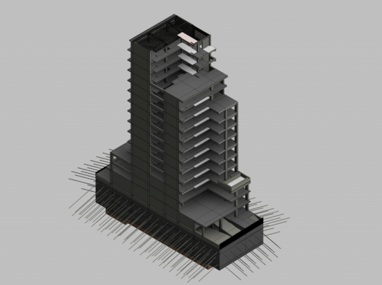 Justo Sierra 2073-Consulting-Construction (1)